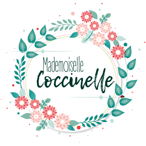 logo-mademoiselle-coccinelle-blog-green-mode-ethique