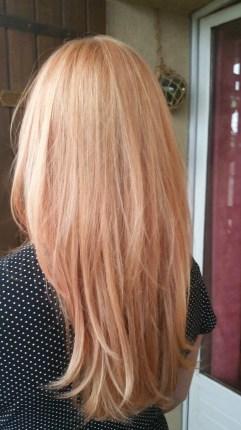 blond rose pastel