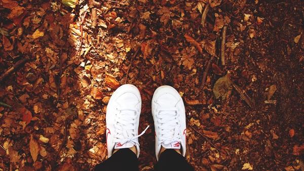 Inspirations d'octobre