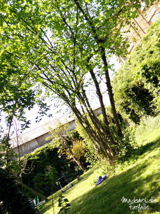 jardin dans le Nord