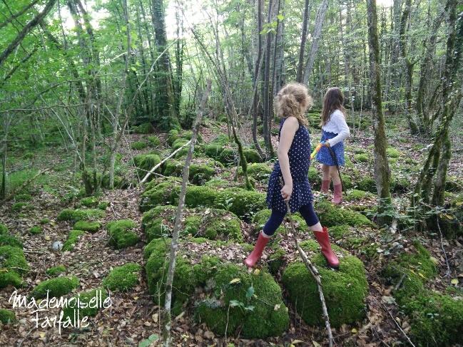 balade en forêt Jura