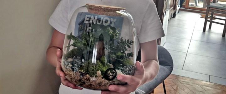 terrarium DIY boby la plante