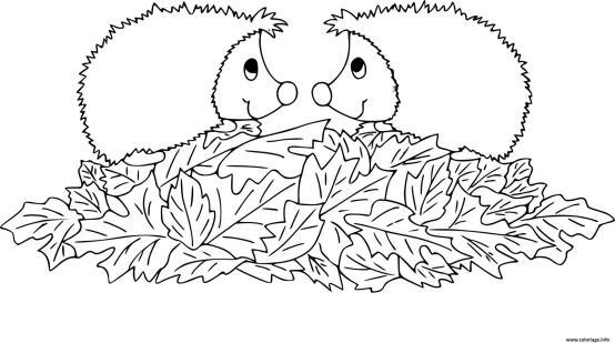 coloriage automne - hérissons