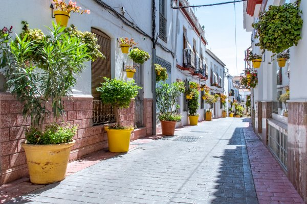 Street in Estepona with yellow pots of plants