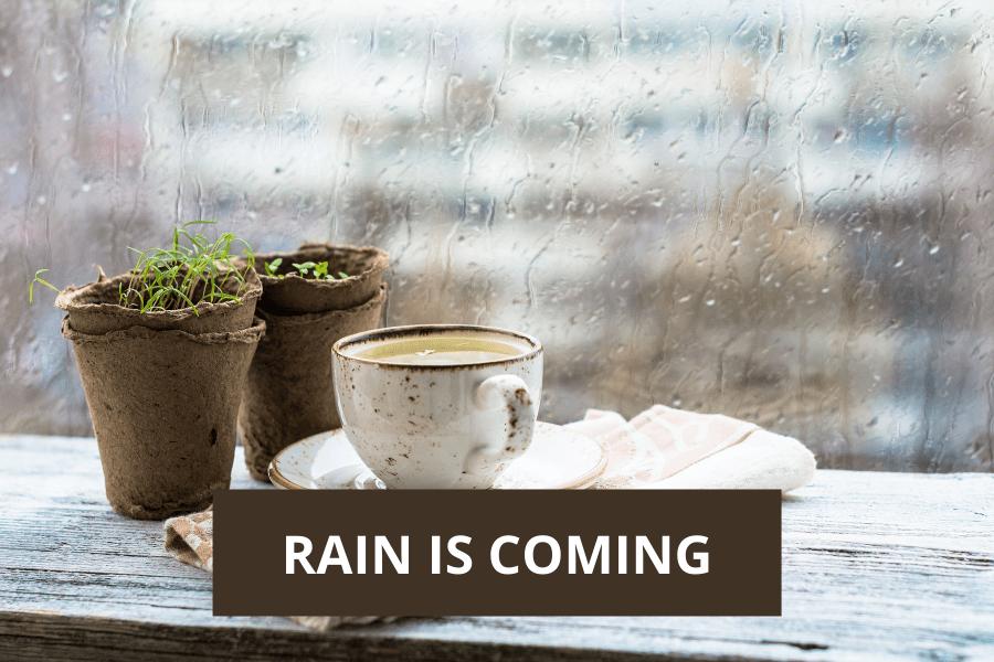 Healing- rain is coming
