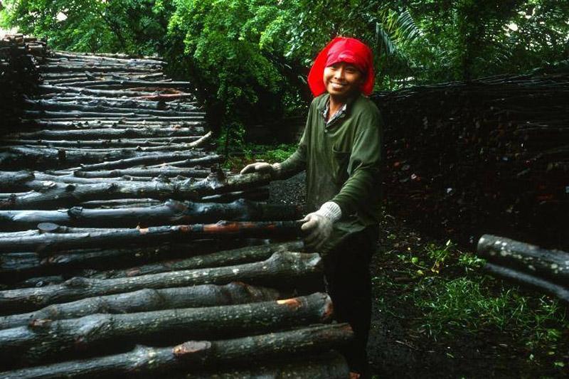 bosques-erradicacion-pobreza