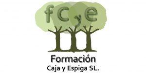fcye_logo