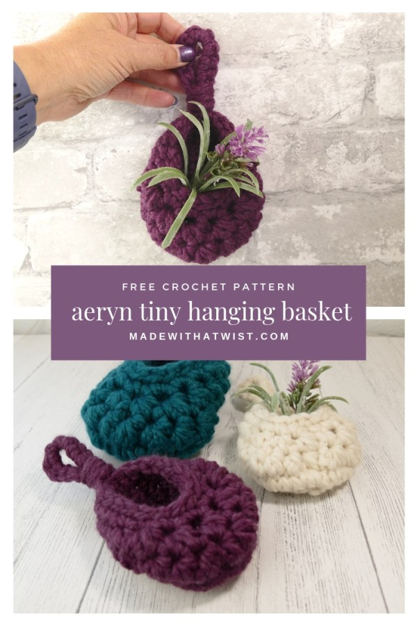 Pinterest image of aeryn tiny hanging basket