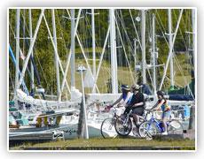 bikes-marina