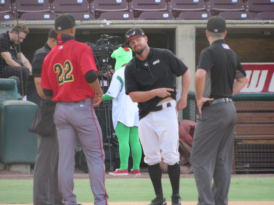Lake Elsinore Storm manager Mike McCoy