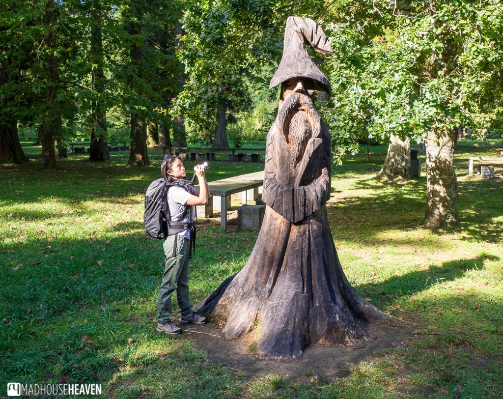 chainsaw sculpture of a wizard in park seen on our day trip to furnas lake
