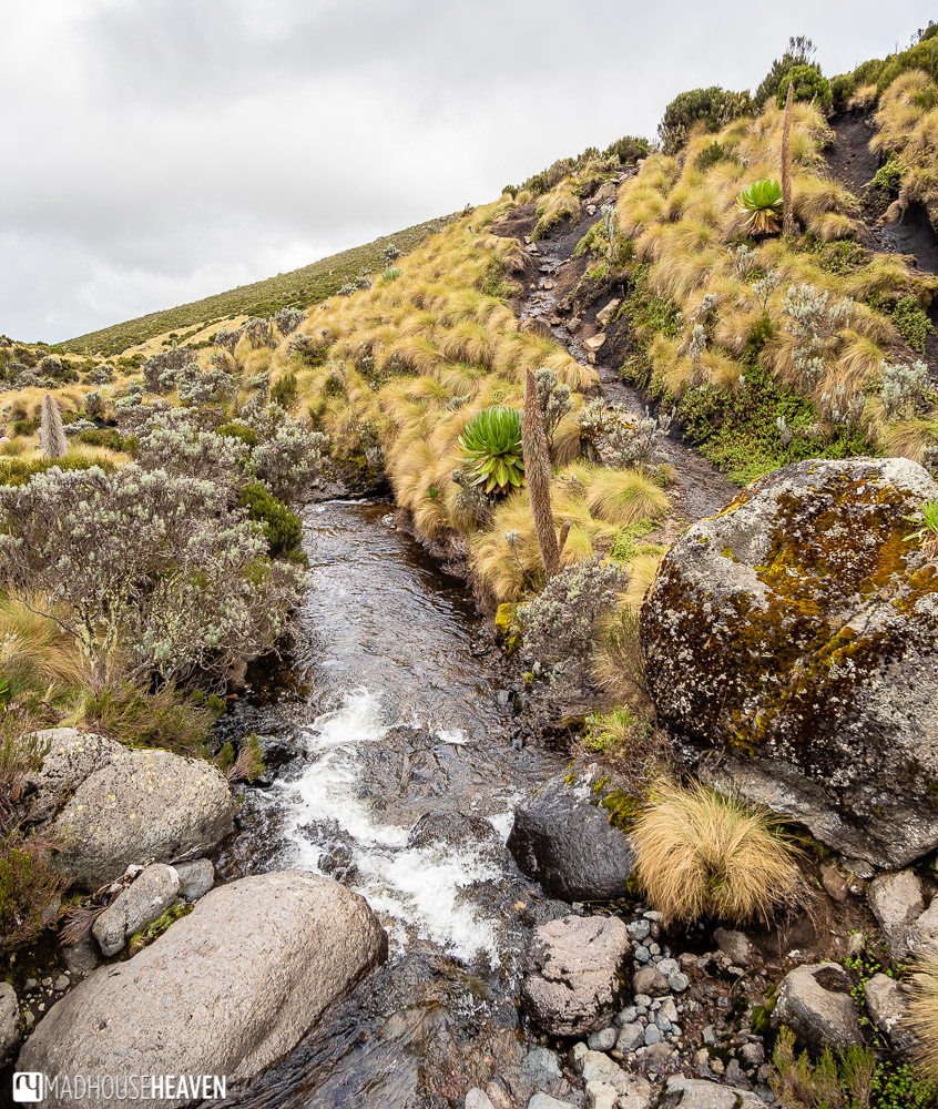 Small stream on the side of Mount Kenya, on an overcast day