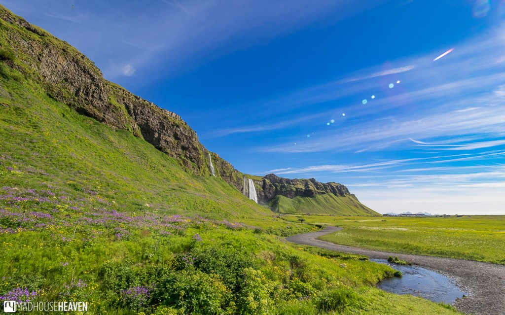 The cliff where Seljalandsfoss and Gljúfrabúi Waterfalls are, stretches for miles in either direction