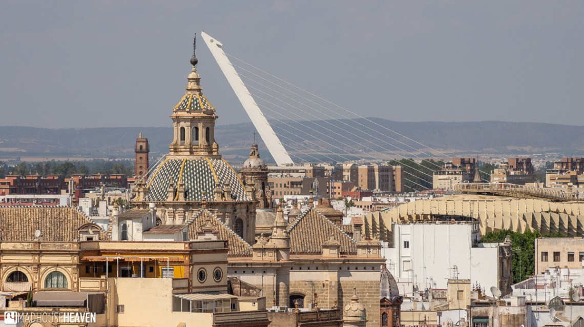 The tops of the Iglesia del Divino Salvador, another former mosque, and the Alamillo Bridge, the masterpiece of Santiago Calatrava, seem to touch