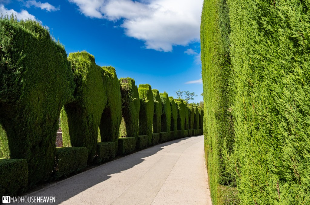 Calle Real de la Alhambra, with its perfectly manicured colonnade, with no people in it