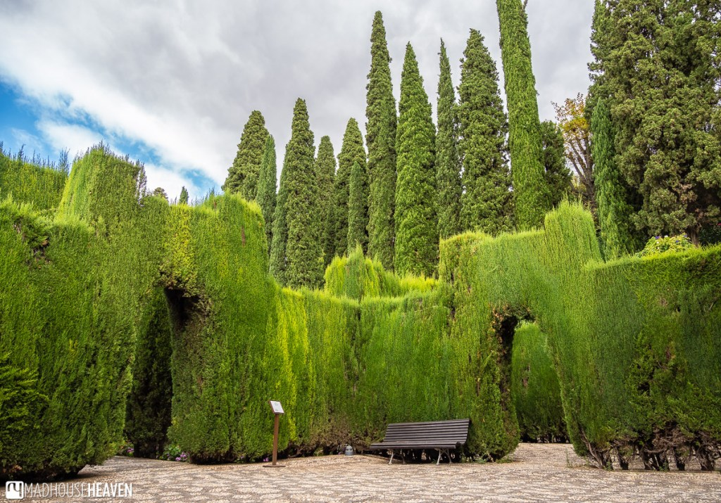Walls in Alhambra gardens made out of trees shaped into rectangular structures