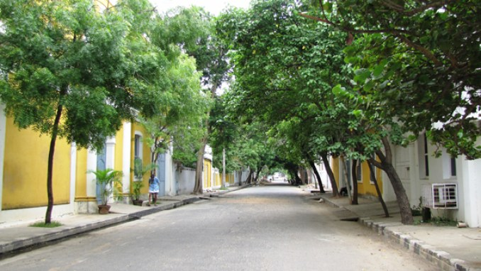 French colony 2- clean pathways beauifully lines with trees.jpg