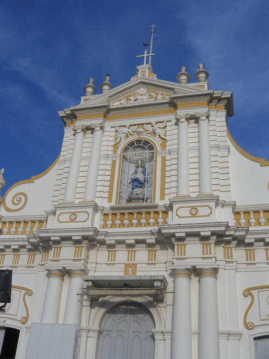 The Immaculate Conception cathedral .png