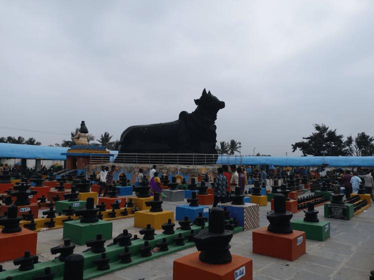 Nandi-kotilingeshwara