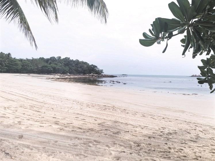 Beach at Nirwana gardens.jpg
