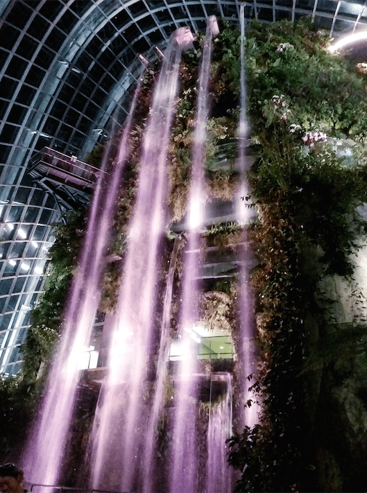 2.Cloud forest waterfall.png