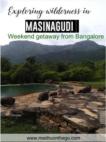 Exploring wilderness in Masinagudi.jpg