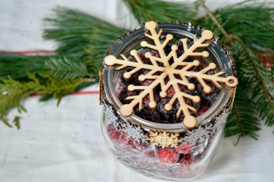 MASON JAR GIFT: SUGARED CRANBERRIES