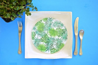 TROPICAL DOLLAR STORE GLASS PLATES