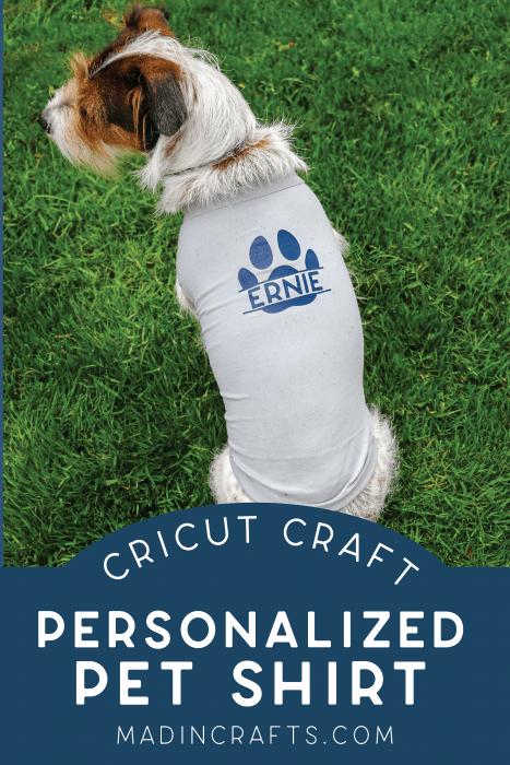 Dog wearing personalized pet shirt