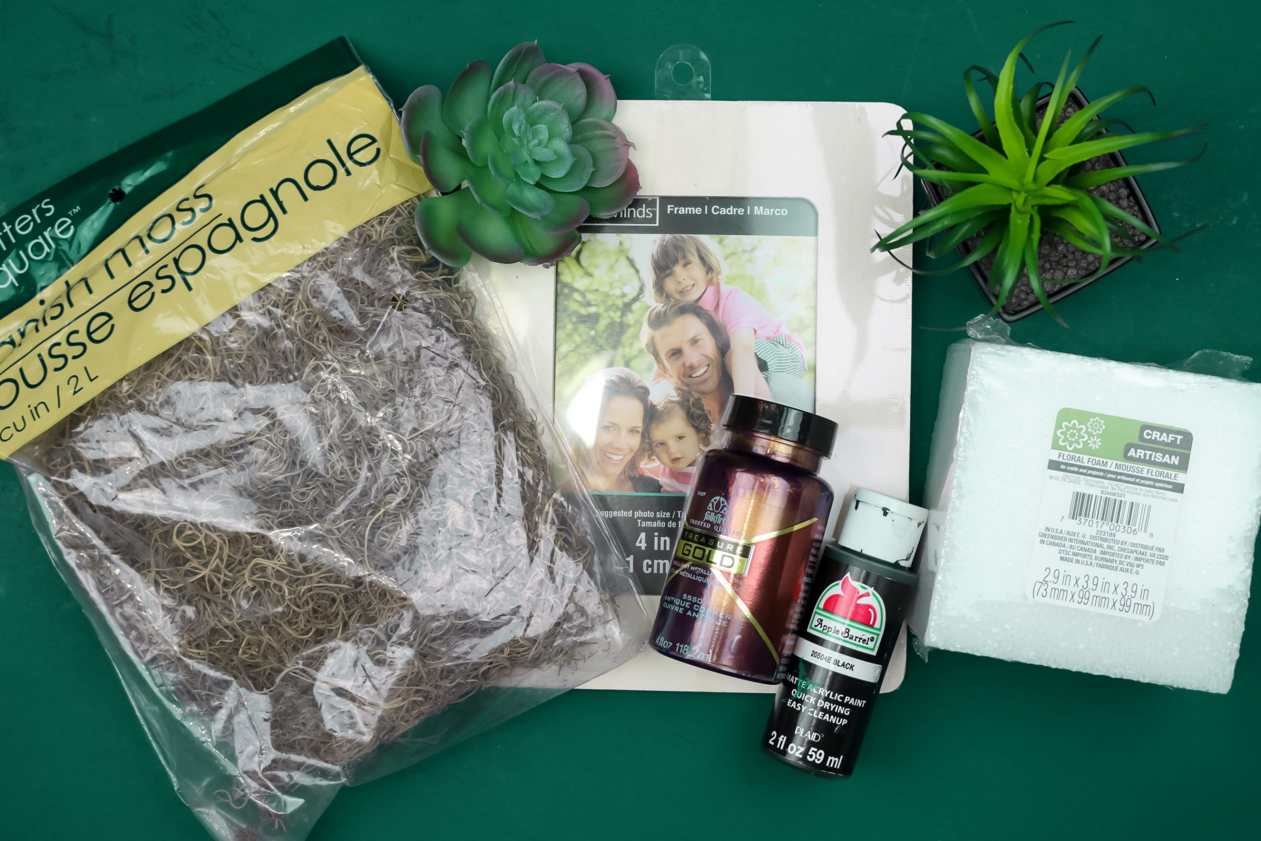 product flat lay of spagnum moss,faux succulents, a wood frame, foam, and craft paint