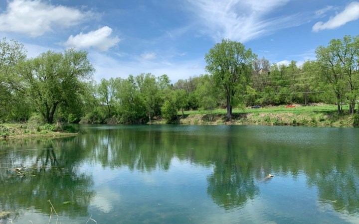 Salmo pond cross plains