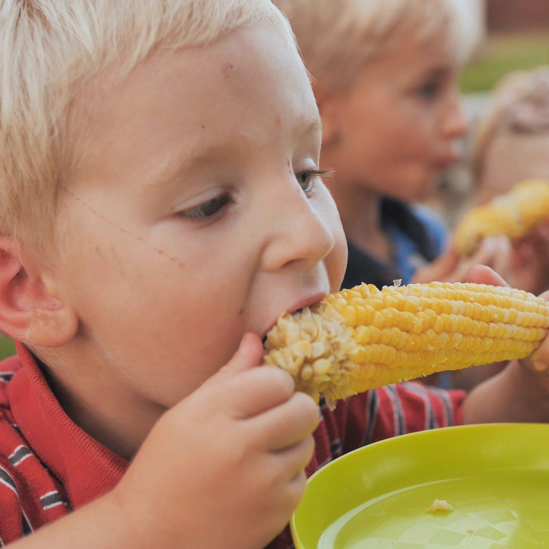 Sweet Corn Festival in Sun Prairie photo license from Adobe Stock