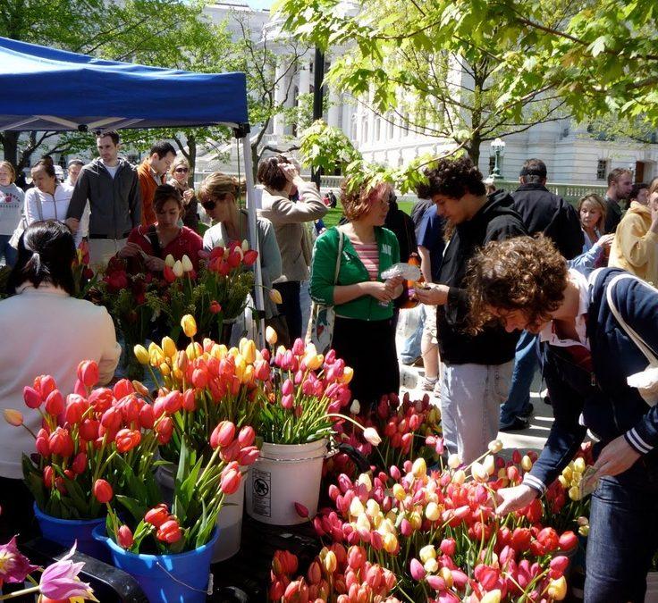 Dane County Famers Market