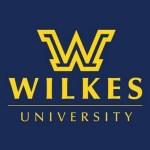 Mattia of Chittenango named to Wilkes University dean's list