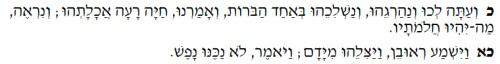 Genesis 37 jacob loved joseph 4