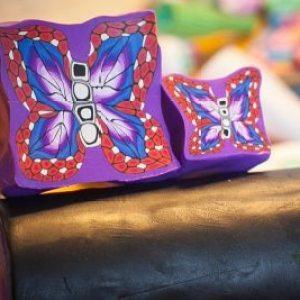 Butterfly Mystery