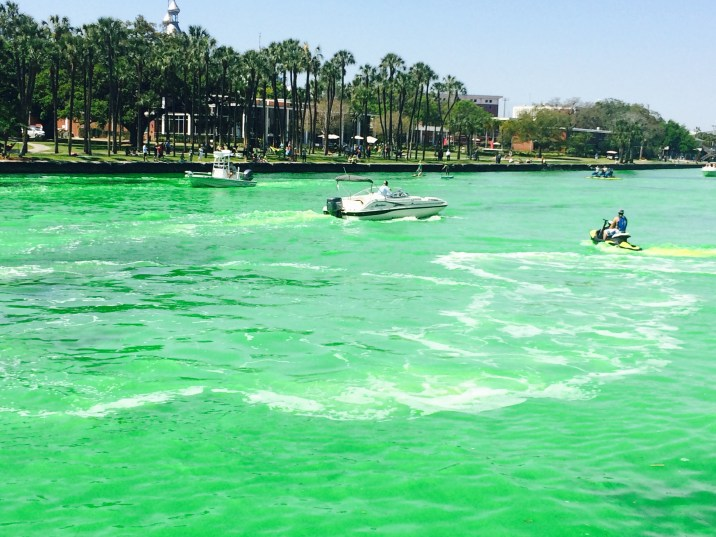 Hillsborough River at St. Patrick's Day Festival