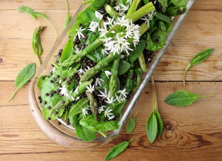 Forårssalat med vild syre, ramsløgblomster, asparges og Depuylinser - Vegansk opskrift - Mad med glød
