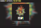 Reekado Banks – You Dey Mad ft AttiFaya