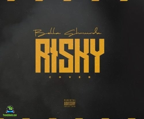 Bella Shmurda - Risky (Cover) Audio