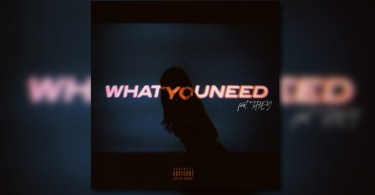 Jae Stephens – What You Need Ft. THEY.