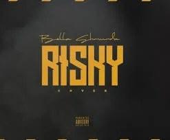Bella Shmurda – Risky Cover
