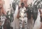 Teejayx6 – Palm Trees