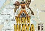 Master KG – Wayawaya [FT Team Mosha]