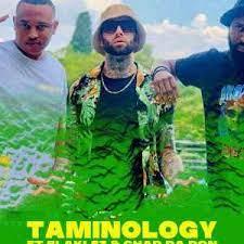 Taminology – Nkao Jola 2.0 ft Chad Da Don & Blaklez