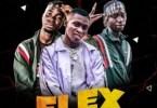 Wizzyperry – Flex ft Kiff Boyz