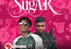 Denilscene – Sugar Ft. Jaywillz