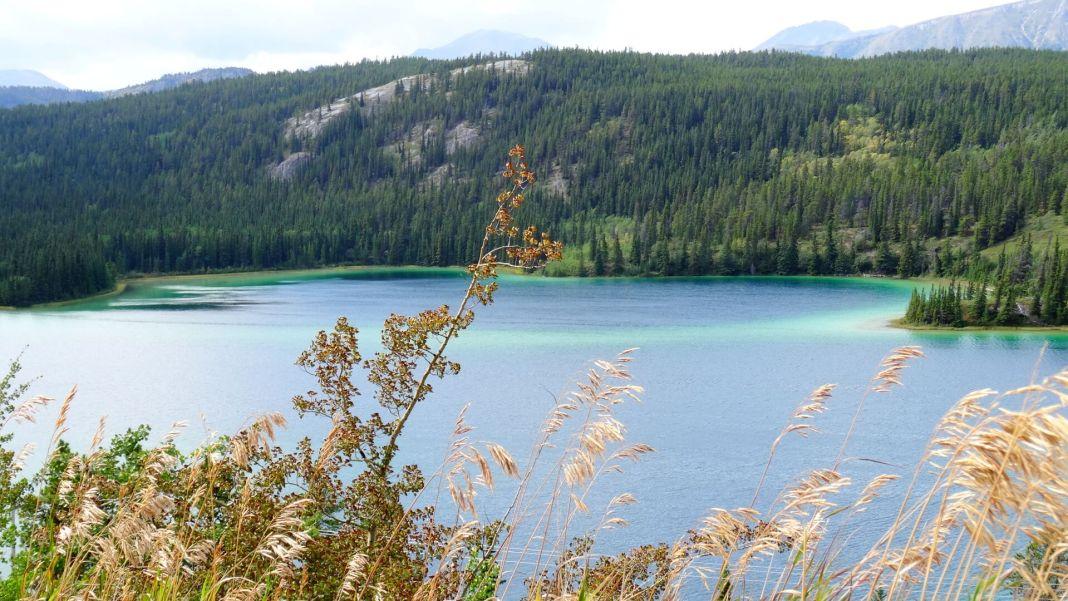 Emerald Lake im Yukon Territory (Kanada)