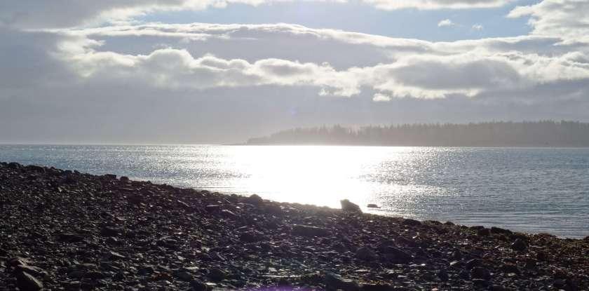 Spaziergang am Strand bei Bartlett Cove (Glacier Bay National Park, Alaska, USA)