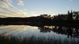 "am Campground ""Otto Lake"" (beim ""Denali National Park, Alaska, USA)"
